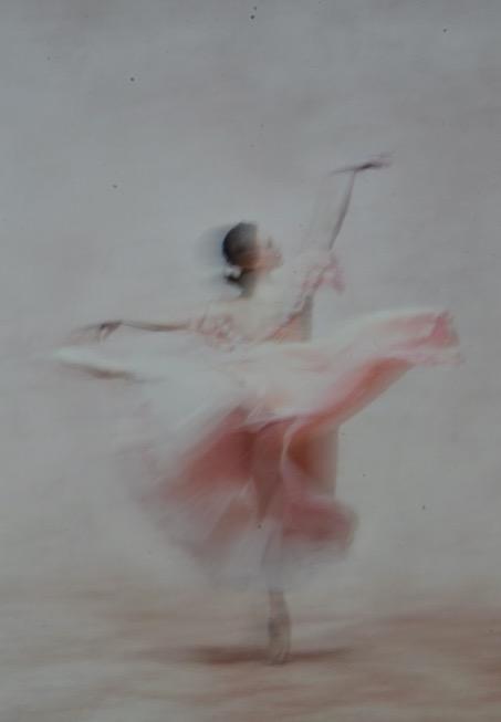 rose et blanc.jpg