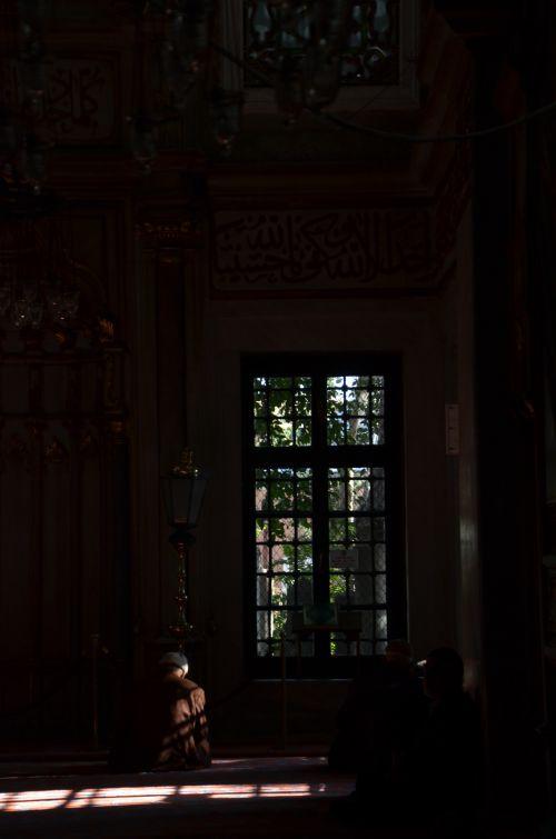 Photo de Fran : Dans le silence
