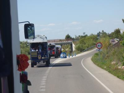 Rocío SL 1.jpg