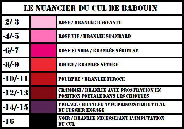 https://static.blog4ever.com/2013/11/758025/Nuancier-du-Cul-de-Babouin.png