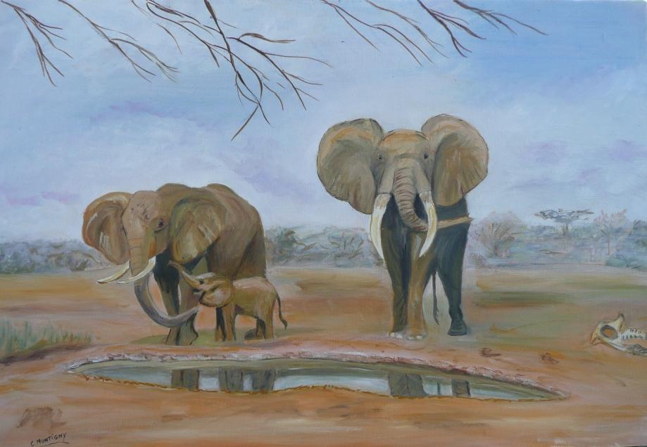 elephants mare.jpg
