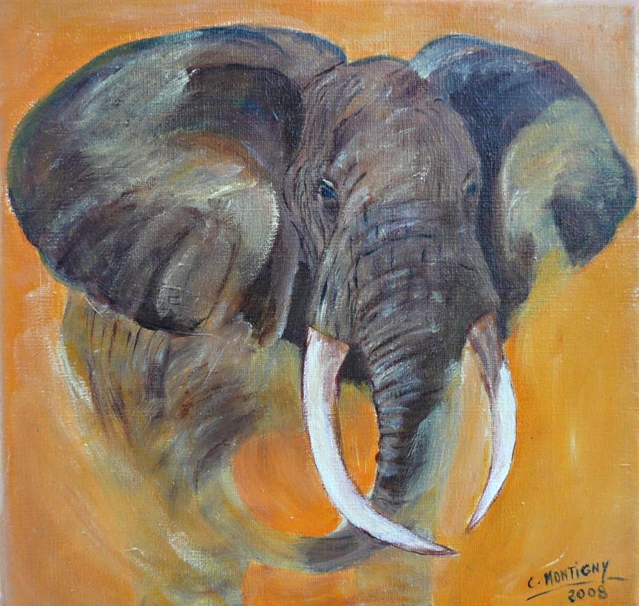elephant orange.jpg