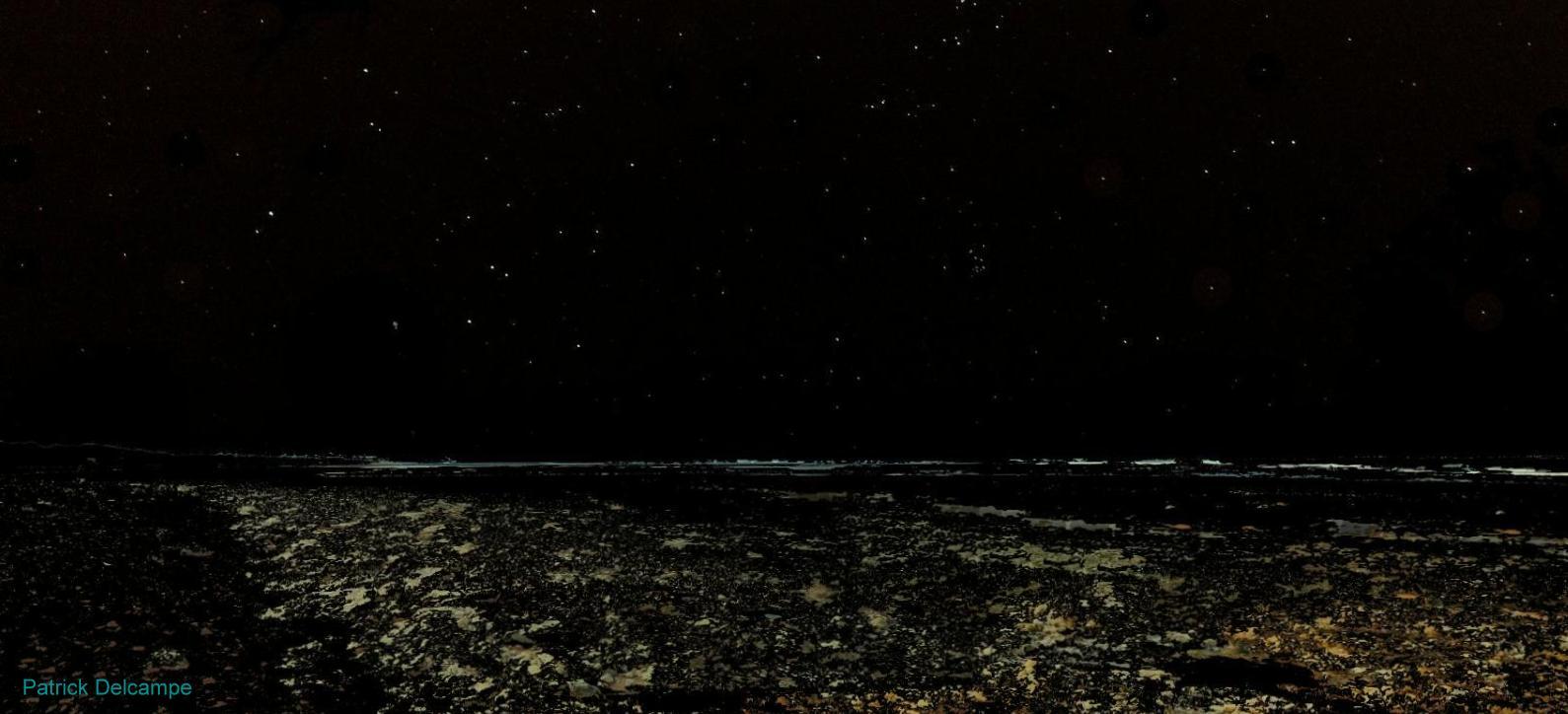 Les Sables Vigner pano 15 mer étoilée.jpg
