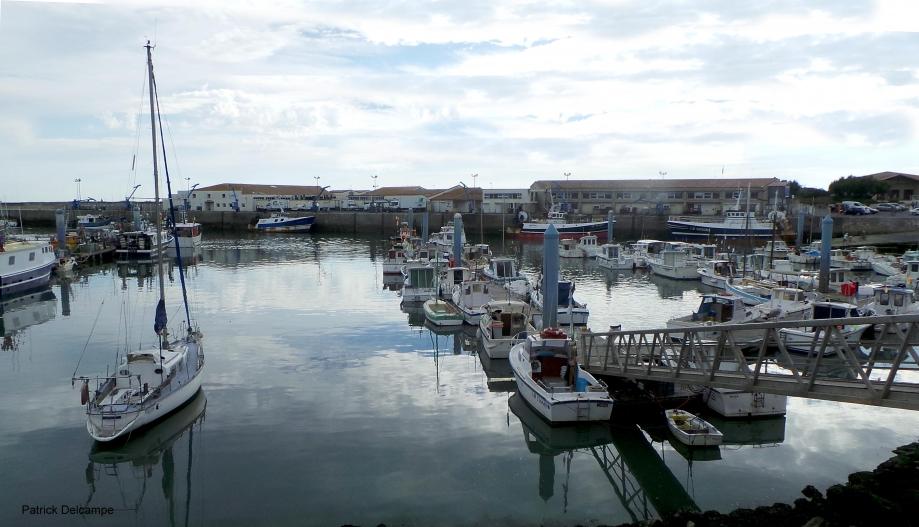Port de pêche de la Cotinière 1.JPG