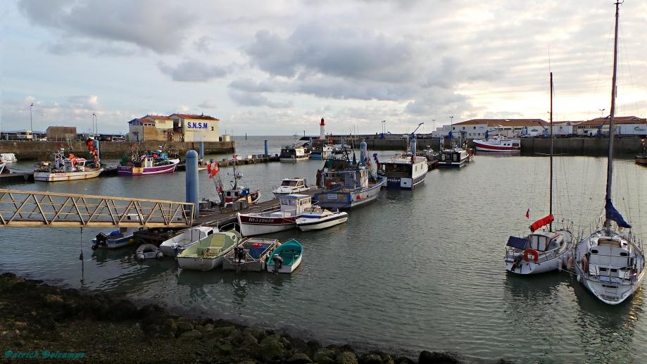 Port de pêche de la Cotinière 2.JPG