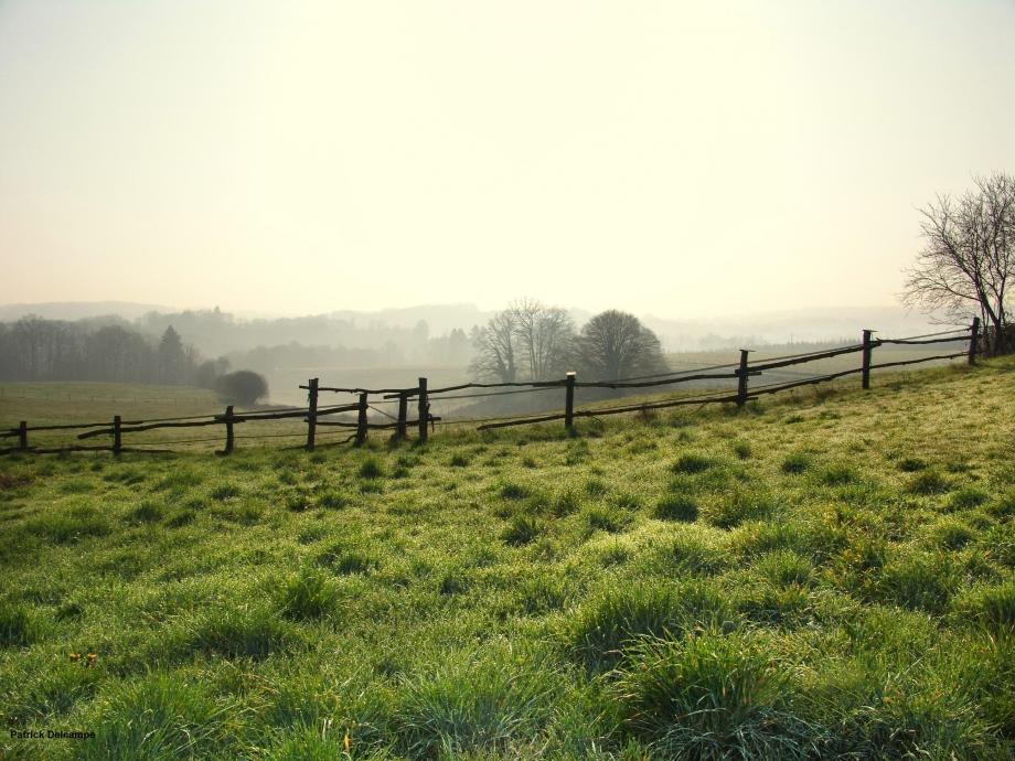 Dordogne verte paysage 1.JPG