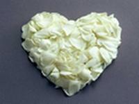 coeur-petales-blanches.jpg
