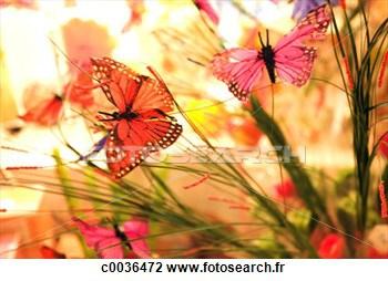 colore-fond-fleurs_~C0036472.jpg