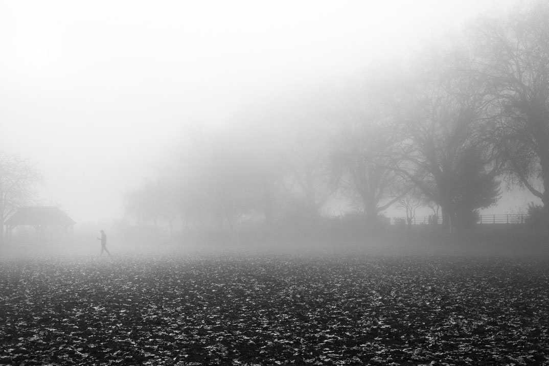 Misty-spleen---Bishops-park-A-reprendre-web.jpg