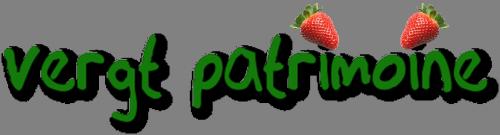 LOGO VP Vergt Patrimoine Transparent.png