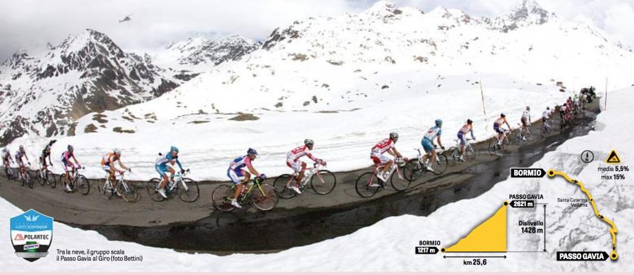 Contador Day.jpg