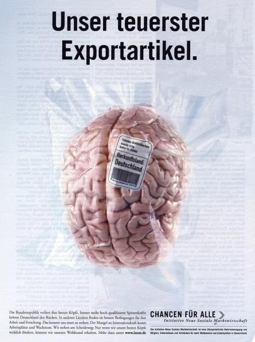 Exportartikel Gehirn.jpg