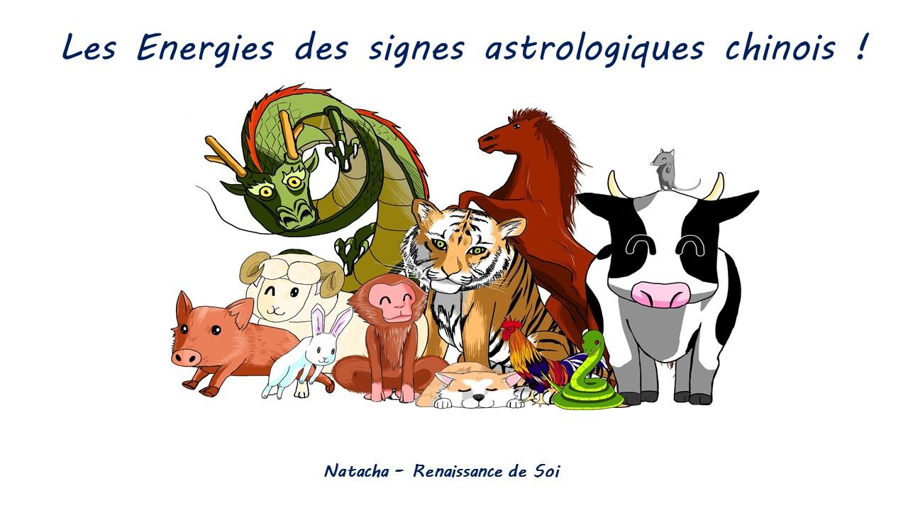 signe astro chinois.jpg