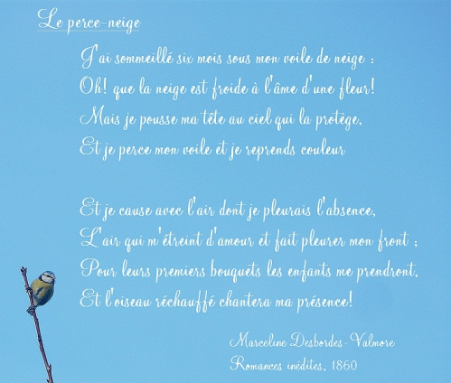 mesange-poeme.jpg