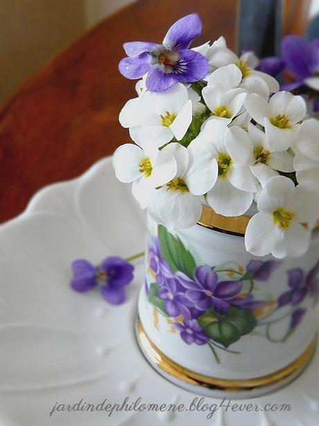 violette-bouquet.jpg