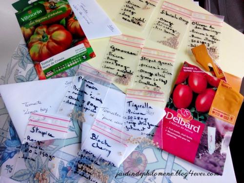 semis-tomates1.jpg