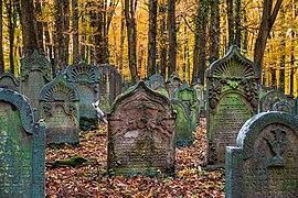270px-Waibstadt_-_Jüdischer_Friedhof_-_ältester_Teil_-_Grabsteine_im_Herbstlaub.jpg