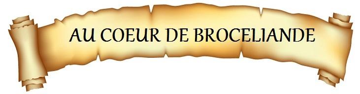 https://static.blog4ever.com/2014/01/762036/B-01.-Au-coeur-de-Brocl--iande.jpg