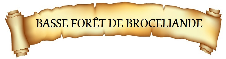 https://static.blog4ever.com/2014/01/762036/H-01.-Basse-for--t-de-Broc--liande.jpg