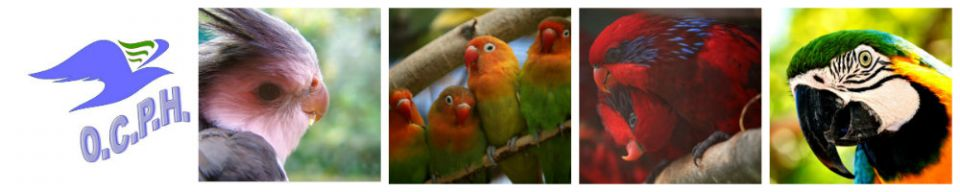 Oiseaux Club du Pays d'Herbauges.