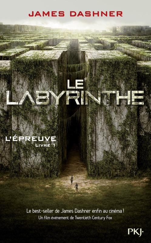 Couverture_2_le_labyrinthe.jpg