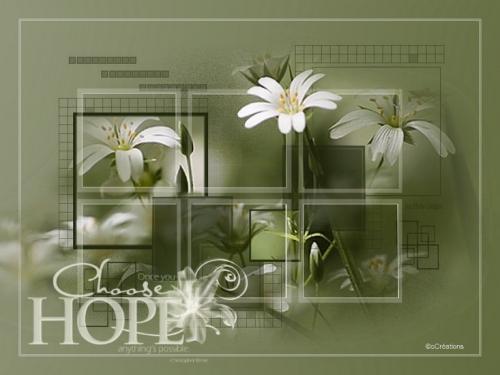 brush hope.jpg