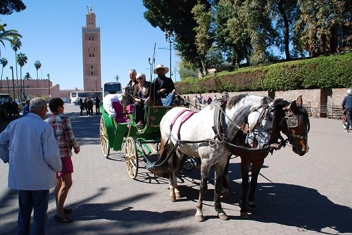 Maroc 2014_1341.jpg