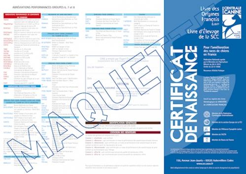 facsimlé_certificat de naissance.jpg