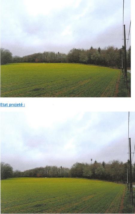 paysager antenne 4G.jpg