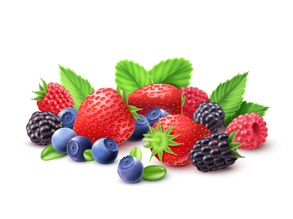 fruits rouges petite taille.jpg