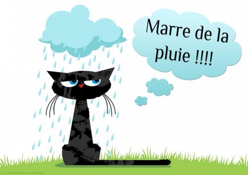 marre-pluie.jpg