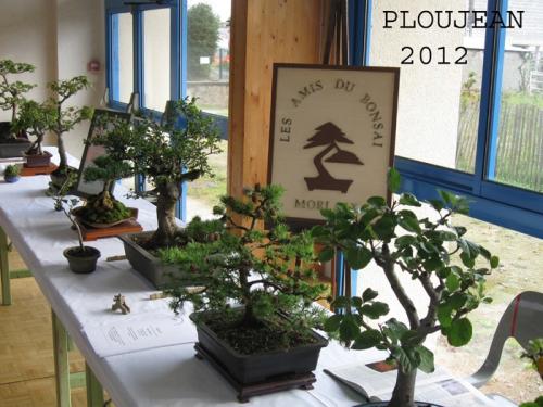 Ploujean 2012-13-bis.jpg