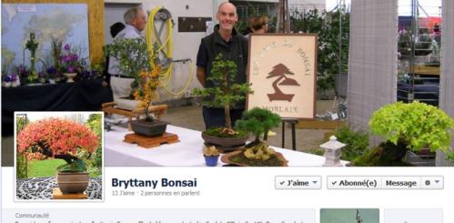 facebook brytannybonsai.PNG