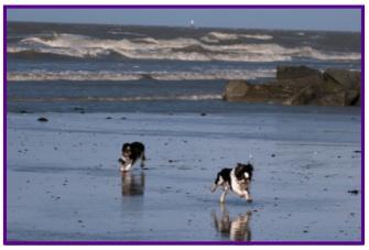 Kings plage2.jpg