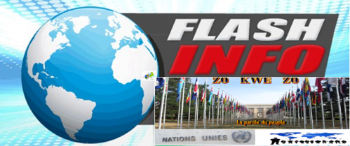 Flashinfo-zokwezo1.png