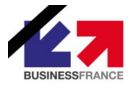 business-france-accompagnateur-entreprises-a-l-international.JPG