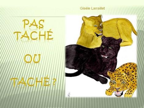 PAS TACHE OU TACHE 470X351.jpg