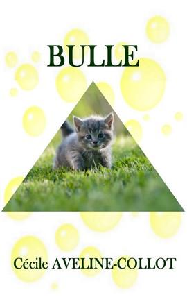 BULLE 428X270.jpg