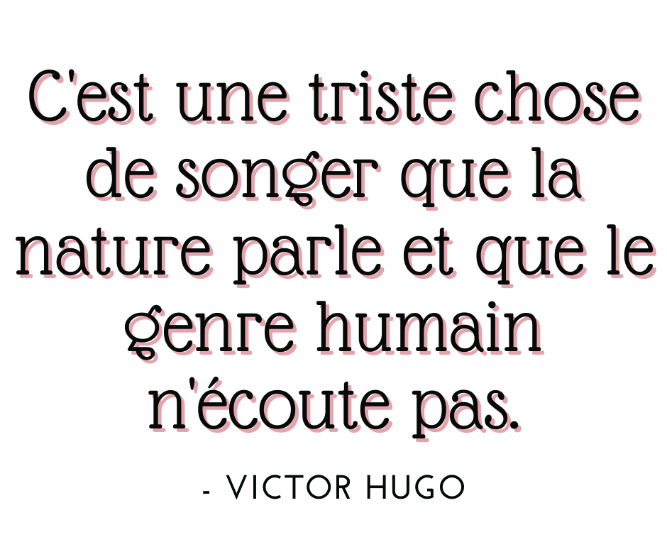 Copie de citation-2