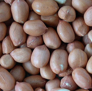 arachides.JPG