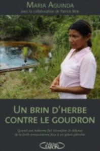 Un_brin_d_herbe_contre_le_goudron_poster.jpg