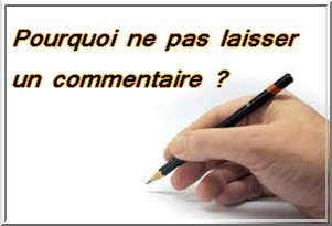 commentaire 1.jpg