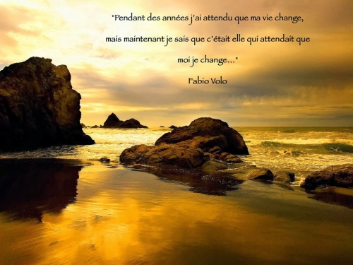 vie change.jpg
