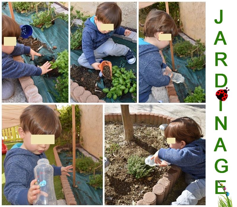 montage anninou jardinage aromates 2016.jpg