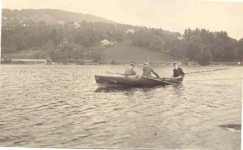 Gerardmer Le Lac et La Chanonyere.jpg