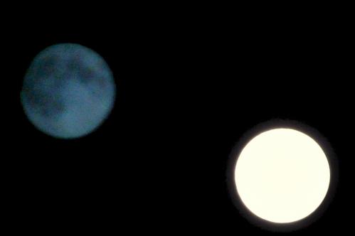 lunes 2 couleur.jpg
