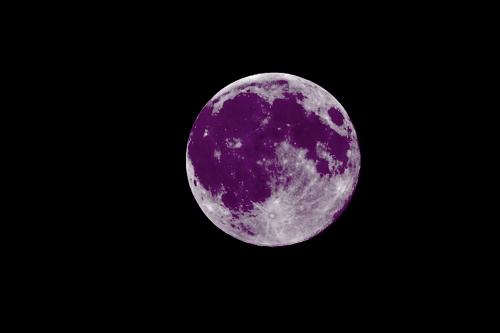 lune violettte.jpg
