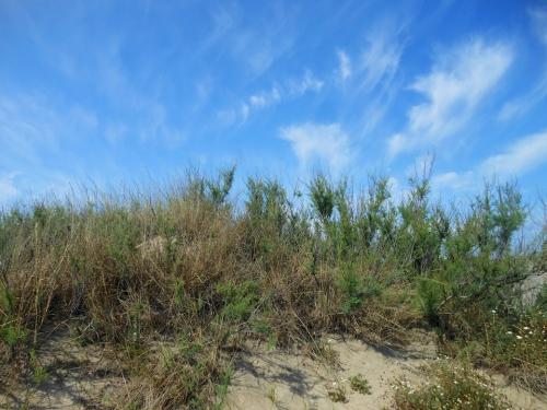 dune nuages.jpg