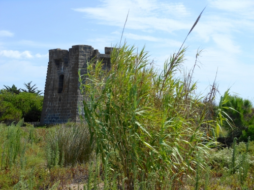 castellas 1.jpg
