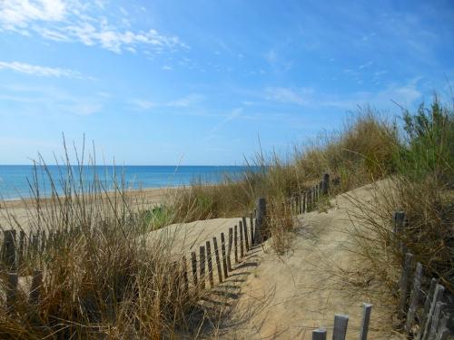 dune 2.jpg